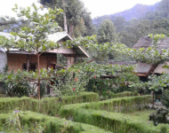 De ecolodge in Tangkahan