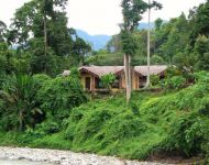 115-eco-lodge-bukit-lawang